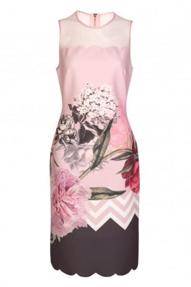 Ted Baker Palace Gardens Mesh Skater Dress