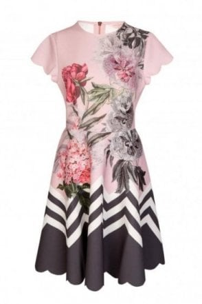 Ted Baker Palace Gardens Ruffle Skater Dress